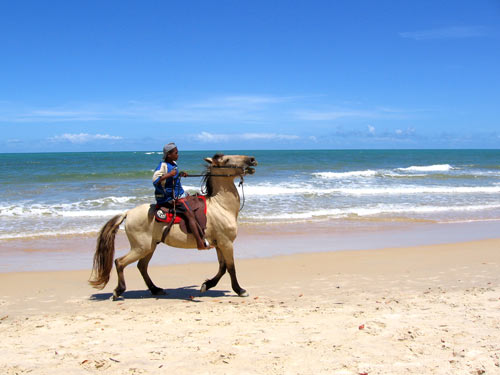 Local bot on a horse on a beach