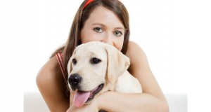 The Top 5 Most Popular Dog Breeds