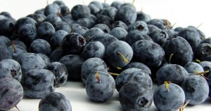 Top 5 Healthiest Foods We Should All Be Eating