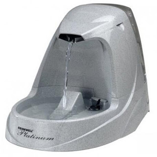 Drinkwell pet fountain gift